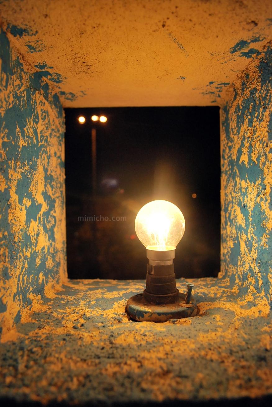 Jaipur lights